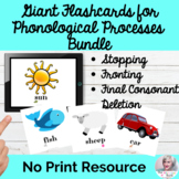 Giant Flashcards for Phonological Processes BUNDLE SET 1 No Print Speech