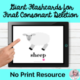 Flashcards for Final Consonant Deletion Phonological Proce