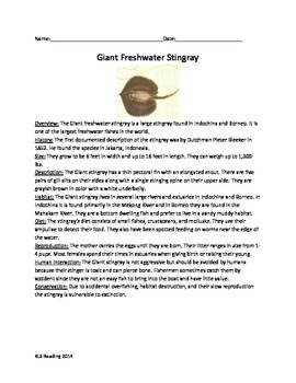 Giant Freshwater Stingray - Review Article Questions Vocabulary