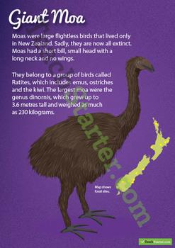 Giant Moa – New Zealand Animal Poster