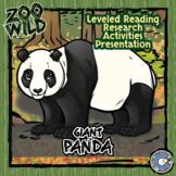 Giant Panda - 15 Zoo Wild Resources - Leveled Reading, Slides & Activities