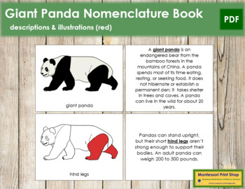 Giant Panda Nomenclature Book - Red