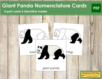 Giant Panda Nomenclature Cards