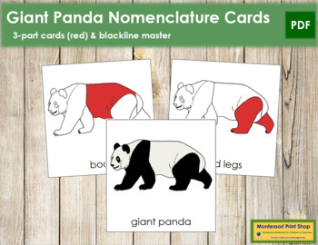 Giant Panda Nomenclature Cards - Red