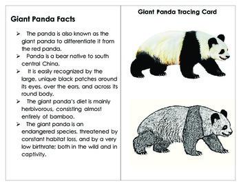 printables  label  parts   giant panda tpt