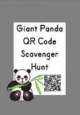 Giant Panda QR Code Scavenger Hunt