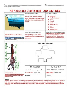 Giant Squid - Grade 3 Wit & Wisdom Module 1 Cornell Notes Activity