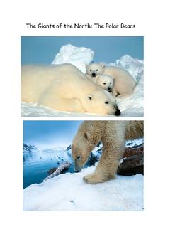 Giants of the Ice: Polar Bears
