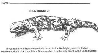 Animal Gila Monster Reading Wksht -Science, Reptiles 4 Mul