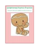 Gingerbread Fluency Practice