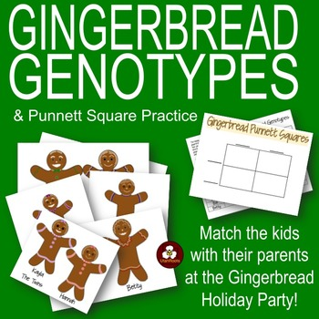 Gingerbread Genotypes and Punnett Square Practice: A Holid