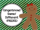 Gingerbread Same and Different
