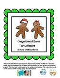Gingerbread Same or Different