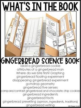 Gingerbread Science Interactive Activities