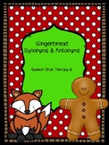 Gingerbread Synonyms and Antonyms for Speech Therapy