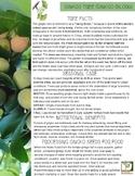 Ginkgo Tree Info Sheet