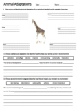 Giraffe Adaptations Worksheet | Year 5 Science (ACSSU043)