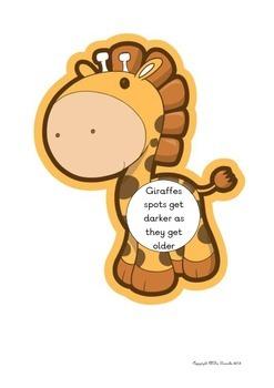 Giraffe Facts P1