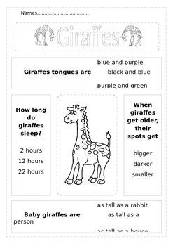 Giraffe Facts Worksheet P1