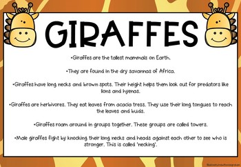 Giraffe Information Report Writing Activity