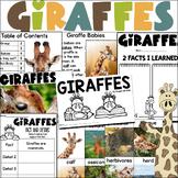Giraffe Informational Text Unit