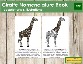 Giraffe Nomenclature Book