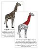 Giraffe Nomenclature Book - Red