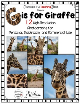 Giraffe Photographs for Classroom and Commercial Use