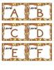 Giraffe Print Leveled Reader Labels