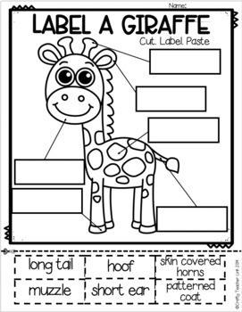 Giraffe Research Report Printables (Safari Animal)