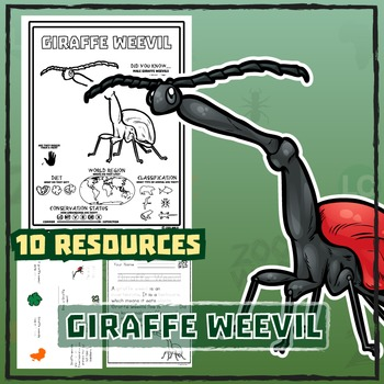 Giraffe Weevil -- 10 Resources -- Coloring Pages, Reading & Activities