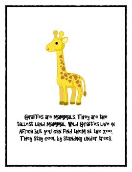 Giraffe and Zebra Nonfiction Text