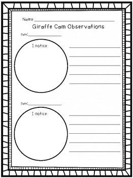 Giraffes (Freebie!)