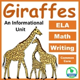 Giraffe: Animal Information Unit