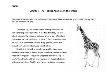 Giraffes: Tallest Animals Info Text w/ 18 Multiple Choice Reading Comprehension