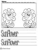 Girasol Desarrollo de Escritura Bilingüe (Sunflower)