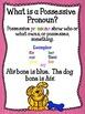 Give A Dog His Bone--A Possessive Pronoun Mini-Unit