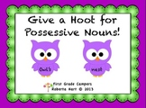 Give a Hoot for Possessive Nouns!