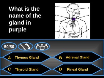 Glands - Who wants to be a millionaire Review