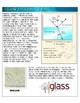 Glass as Evidence