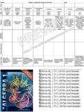 Glencoe Common Core Algebra 1 Lesson Unit Plans (12 Word T