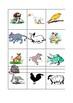 Gli Animali - Vocabulary Activity