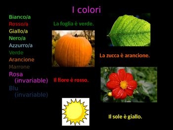 Gli aggettivi qualificativi Adjectives in italian