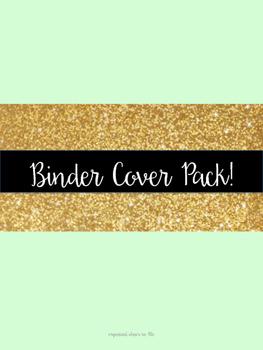 Glitter & Mint Teacher Binder Cover Pages!