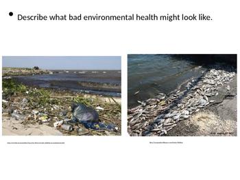Global Issues - Environmental Health
