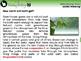 Global Warming CAUSES: Global Warming - MAC Gr. 5-8
