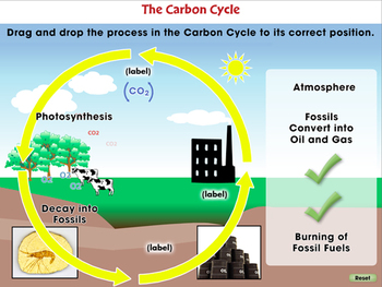Global Warming CAUSES: Greenhouse Gases: Carbon Dioxide - NOTEBOOK Gr. 5-8