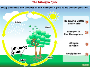 Global Warming CAUSES: Greenhouse Gases: Nitrous Oxide - PC Gr. 5-8