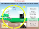 Global Warming CAUSES: The Carbon Cycle - MAC Gr. 5-8