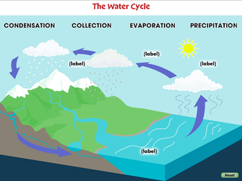 Global Warming CAUSES: The Water Cycle - MAC Gr. 5-8